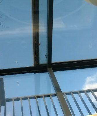 Freestanding Box Rooflight - Glazing Vision Europe NL