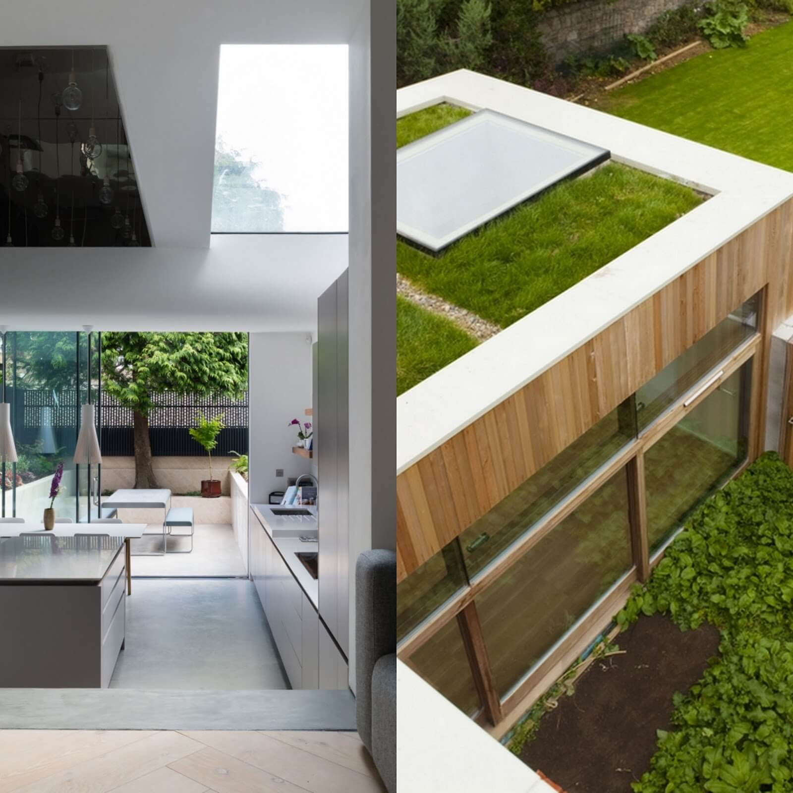 Example rooflight green roof