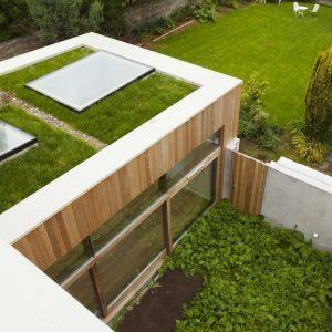 Green roof rooflight